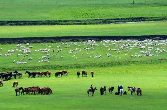 《还看今朝》大美内蒙古亮丽风景线何只是马牛羊……