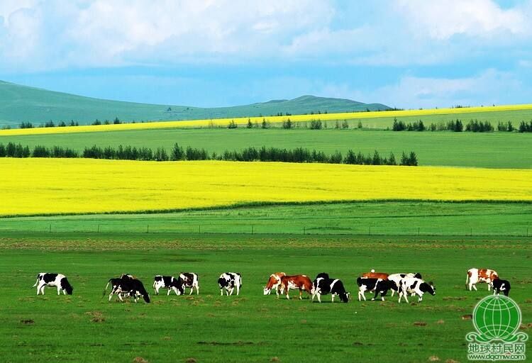 北国风光之内蒙古