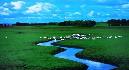 呼伦贝尔:醉美草原天堂
