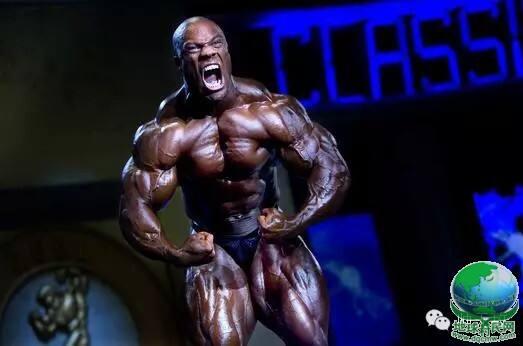 施瓦辛格肌肉训练法