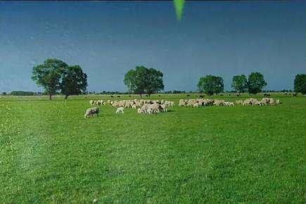 地球村记忆之五: 草原天路 牧人豪宅