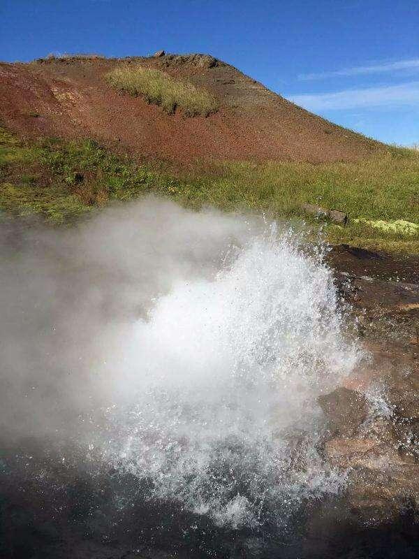 走遍地球村系列报道之五——看冰岛的野鸭 从我身边列队而过