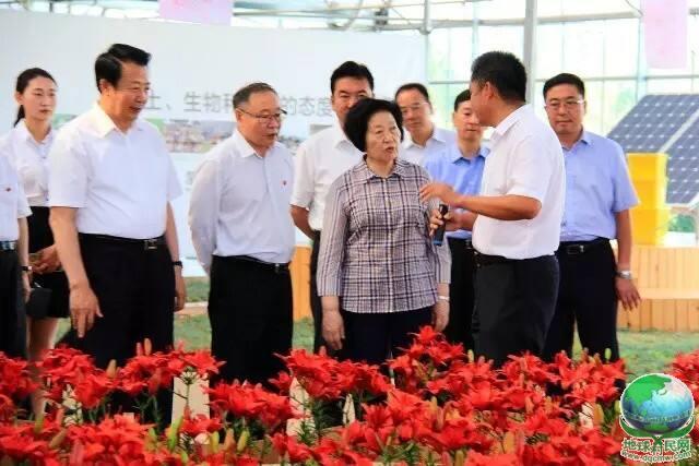 中共中央政治局委员、中央统战部部长孙春兰来蒙草调研